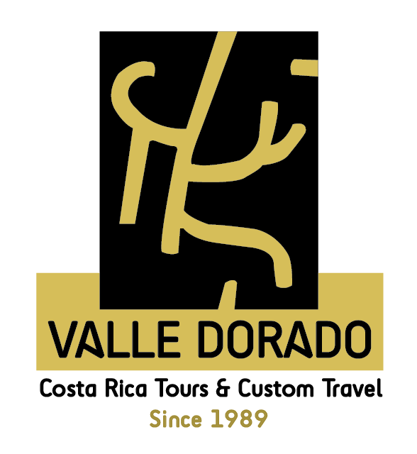 Valle Dorado Tours
